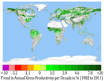 Greening Earth: spatial patterns